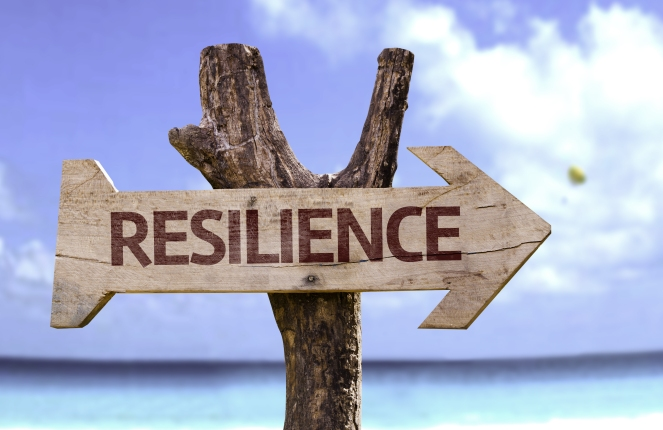 resilience-image