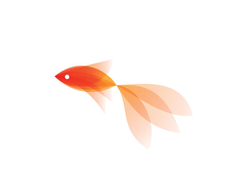 Pretty fish dating